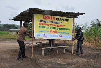 世界卫生组织图片/C. Banluta