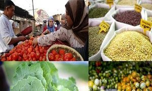 FAO says Good harvests and ample stockpiles continue to drive international food prices down.