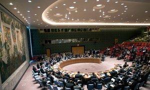 Le Conseil de sécurité de l'ONU. Photo ONU/Kim Haughton