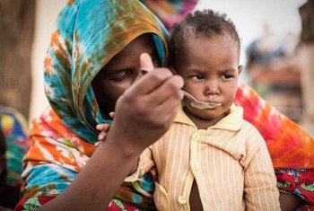 Photo: WFP