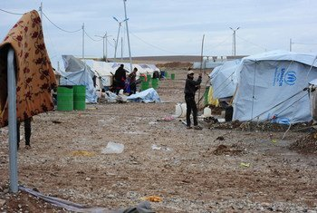Des déplacés dans le camp de Bahirka près d'Erbil, dans le nord de l'Iraq. Photo MANUI