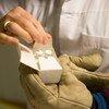 Desarrollo de vacunas contra el ébola. Foto:OMS/M. Missioneiro