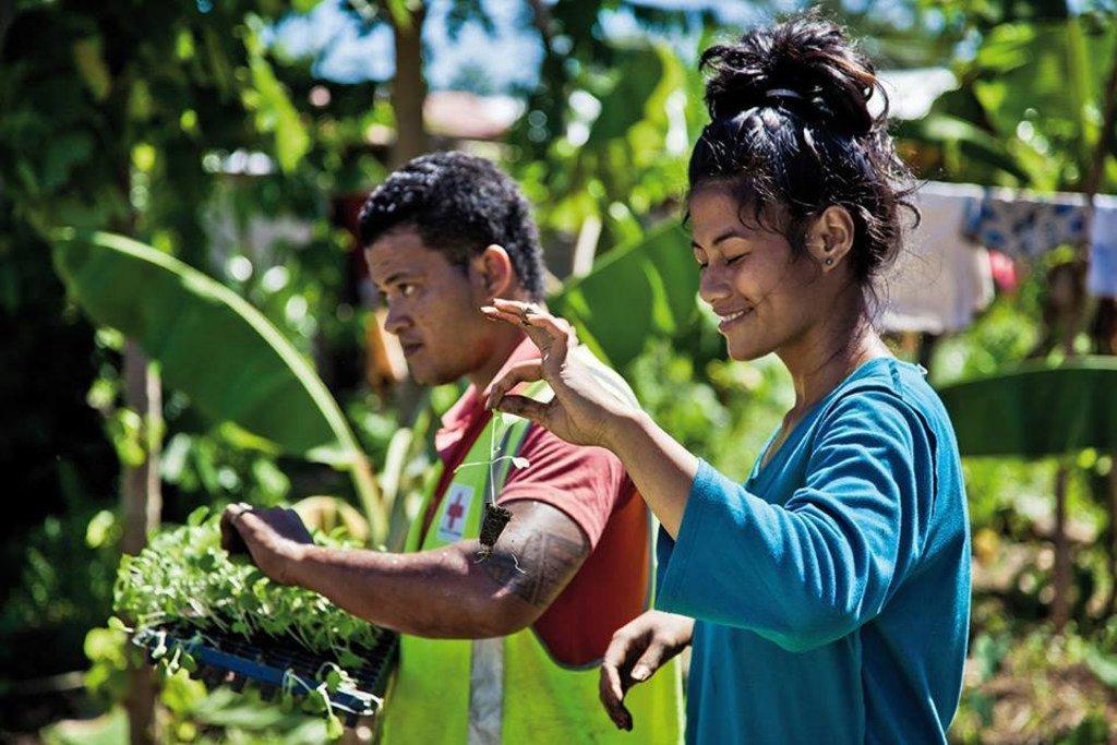 Des agriculteurs dans un jardin potager à Samoa (photo d'archives).