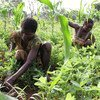 Farmers at work in the Central African Republic (CAR).