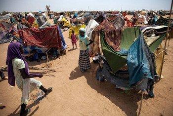 Desplazados en el campamento de Kalma, Darfur del Sur. Foto de archivo: UNAMID/Albert González Farran