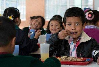 Une bonne nutrition nécessite des systèmes alimentaires plus durables, équitables et résilients.
