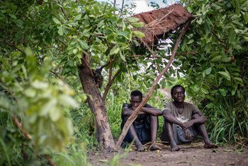 Two men displaced by violence in northern Katanga, Democratic Republic of the Congo (DRC), sit beneath the makeshift shelter which is now their home.