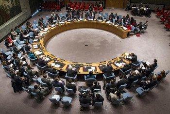 фото ООН/Л.Фелипе