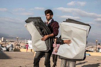 A Zakho, en Iraq, des hommes transportent des matériaux isolants distribué dans un centre du HCR. Photo OCHA/Iason Athanasiadis