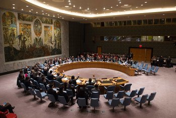 Фото ООН/Эскиндер Дебебе