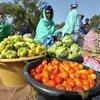 Une femme vendant des légumes en Gambie, l'un des pays célébrés par la FAO pour ses progrès dans la lutte contre la faim. Photo : FAO/SEYLLOU Diallo
