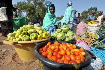 Mwanamke akichuuza mbogamboga nchini Gambia.