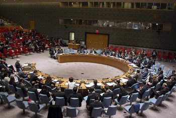 A wide view of the Security Council meeting on the situation in Darfur.