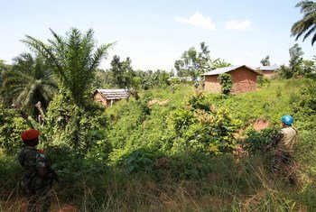 On 5 December 2014, a joint security operation by MONUSCO and FARDC troops was carried out in the locality of Eringeti, following the recent massacres in the Beni territory, North Kivu, Democratic Republic of the Congo (DRC).  Photo MONUSCO/Abel Kavanagh