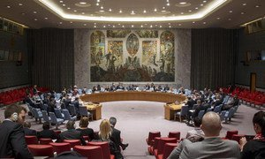 A wide view of the Security Council. (File photo)