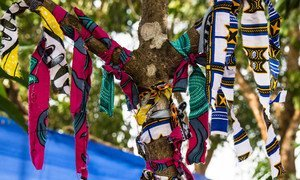 Patients who recover from the Ebola virus disease tie a ribbon to the tree on leaving the Maforki Ebola Treatment Centre in Port Loko, Sierra Leone.
