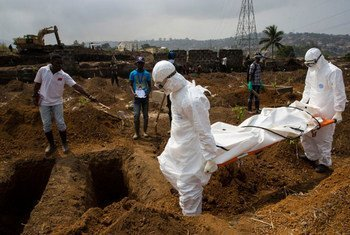 The body of a suspected Ebola case in Sierra Leone is taken by an International Federation of Red Cross (IFRC) team on 24 December to the cemetery where it was buried in a dignified way.