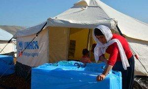 Un résident du camp de Arbat en Iraq ouvre une boîte contenant un isolant qui permettra à sa famille de rester au chaud cet hiver. Photo : HCR/N. poulain