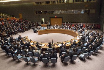 Voting takes place in the Security Council on a draft resolution dealing with Palestinian statehood.