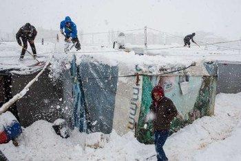 Refugiados sirios en Líbano. Foto: ACNURA. McConnell