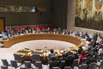 Security Council meets on the Democratic Republic of the Congo (DRC) and issues statement calling on its leader to approve joint action to 'neutralize' rebels.