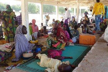 Nigerianos desplazados por Boko Haram.  Foto: ACNUR/D. Mbaoirem