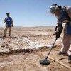 排雷人员正在阿富汗清理地雷。联阿援助团图片/Fraidoon Poya