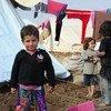 Niños yazidi desplazados por la violencia del grupo terrorista ISIS en Iraq. Foto: UNAMI