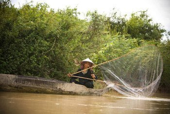 Pesca en el río Tonle Sap, en Camboya. Foto:  FAO/A.K. Kimoto
