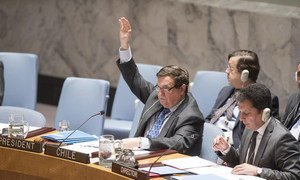 Amb. Cristián Barros Melet of Chile, President of the Security Council for January, voting as the Council unanimously renewed sanctions on the Democratic Republic of the Congo (DRC).