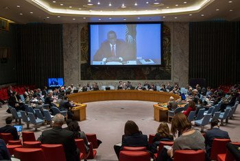 Wide view of the Security Council.