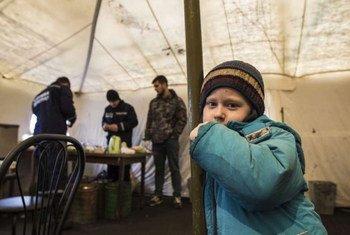 难民署图片/B. Kinashchuk