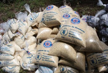 Some of the food distributed to the drought-affected communities of Las Hastas and Los Achiotes in the town of Orocuina, Choluteca, Honduras.