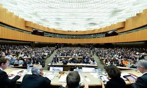Wide view of participants at the climate change talks in Geneva.