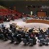 Consejo de Seguridad. Foto:ONU/Devra Berkowitz