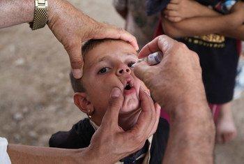 Vacunación contra la polio en Brasil.