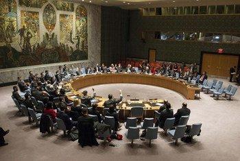 Le Conseil de sécurité de l'ONU. Photo : ONU / Loey Felipe