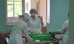 Women employees at a private company pack pharmaceuticals in Moldova. World Bank/Victor Neagu
