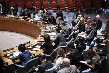Le Conseil de sécurité des Nations Unies. Photo ONU/Evan Schneider