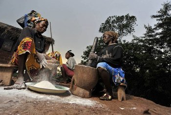 Women process cassava for food preparation in Mbaiki, Central African Republic. $6.2 million is urgently needed to prevent further worsening of the food security situation.