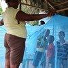 Niños se protegen con una red de la malaria en República Dominicana. Foto: OMS/PAHO