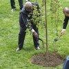 El Secretario General de la ONU, Ban Ki-moon (der.), y el Presidente de la Asamblea General, Sam Kutesa, plantan un árbol para recordar a las innumerables víctimas que perdieron la vida en la II Guerra Mundial. Foto: ONU/Mark Garten
