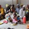 Nigerianos refugiados en Camerún para huir de la violencia de Boko Haram. Foto de archivo: PMA/Sofia Engdahl