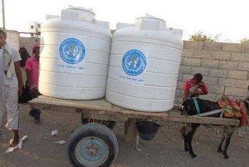En raison des pénuries de carburant, des charrettes tirées par des ânes sont encore utilisées pour fournir de l'eau potable aux personnes déplacées à l'intérieur à Hodeida, au Yémen. Photo : l'OMS