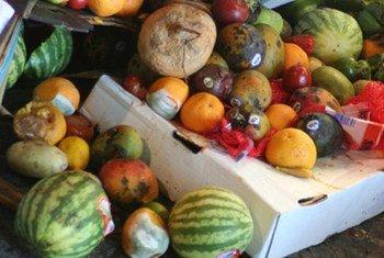 les pertes et gaspillages alimentaires - angle mort de la lutte contre la faim.