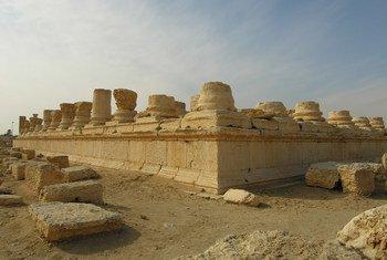 Sitio arqueológico de Palmira. Foto: UNESCO/F. Bandarin