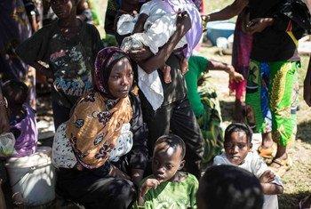 Des Burundais fuyant la violence pré-électorale se reposent sur les rives du lac Tanganyika en République démocratique du Congo après un voyage par bateau épuisant de 22 heures. Plus de 100.000 Burundais ont fui leur pays au cours du mois d'avril 2015 vers la Tanzanie, le Rwanda et la RDC. Photo : UNHCR / F. Scoppa