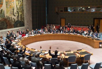 安理会通过有关处理小武器非法贸易问题决议。资料图片/Eskinder Debebe