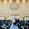 Assembleia Mundial da Saúde, em Genebra.
