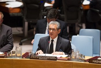 Special Representative and Head of the United Nations Interim Administration Mission in Kosovo (UNMIK) Farid Zarif briefs the Security Council.